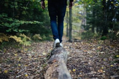 Hiking Melbourne: Top 4 Trails to Explore in 2020